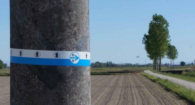 La nuova fascetta da 1 metro di lunghezza, combinata con il segnavia a freccia, consente di installare i segnavia anche su grandi pali di cemento