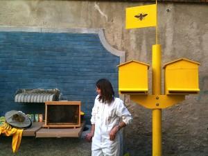 Arnia didattica con api