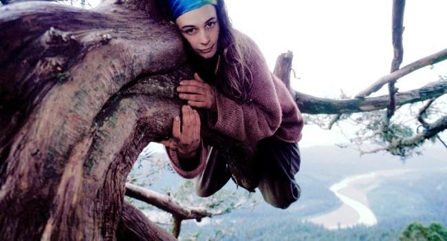 juliahill sequoia
